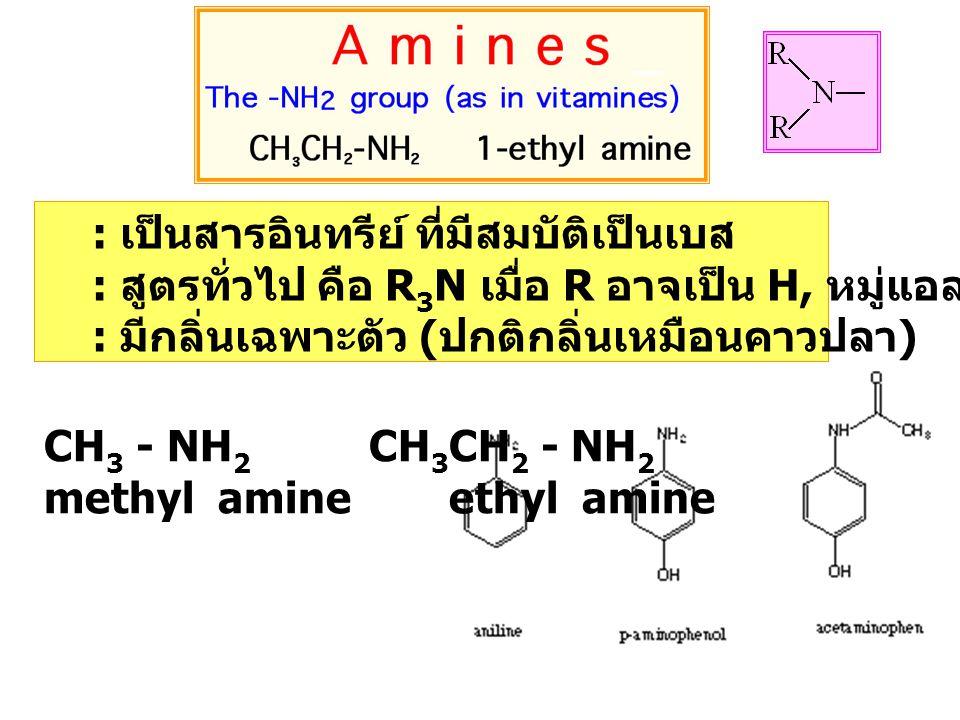: เป็นสารอินทรีย์ ที่มีสมบัติเป็นเบส : สูตรทั่วไป คือ R 3 N เมื่อ R อาจเป็น H, หมู่แอลคิล หรือ หมู่เอริล : มีกลิ่นเฉพาะตัว ( ปกติกลิ่นเหมือนคาวปลา ) CH 3 - NH 2 CH 3 CH 2 - NH 2 methyl amine ethyl amine