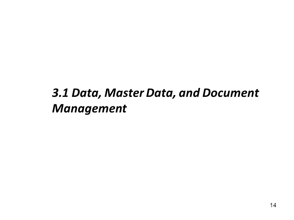 3.1 Data, Master Data, and Document Management 14