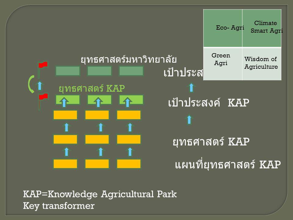 ยุทธศาสตร์มหาวิทยาลัย ยุทธศาสตร์ KAP เป้าประสงค์ เป้าประสงค์ KAP แผนที่ยุทธศาสตร์ KAP ยุทธศาสตร์ KAP Eco- Agri Climate Smart Agri Green Agri Wisdom of