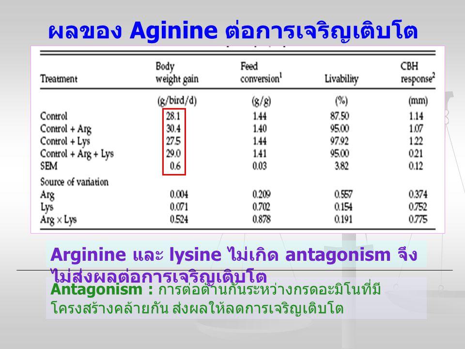 ผลของ Aginine ต่อการเจริญเติบโต Antagonism : การต่อต้านกันระหว่างกรดอะมิโนที่มี โครงสร้างคล้ายกัน ส่งผลให้ลดการเจริญเติบโต Arginine และ lysine ไม่เกิด