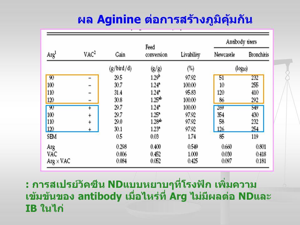 ผล Aginine ต่อการสร้างภูมิคุ้มกัน : การสเปรย์วัคซีน ND แบบหยาบๆที่โรงฟัก เพิ่มความ เข้มข้นของ antibody เมื่อไหร่ที่ Arg ไม่มีผลต่อ ND และ IB ในไก่