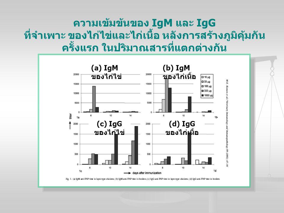 ความเข้มข้นของ IgM และ IgG ที่จำเพาะ ของไก่ไข่และไก่เนื้อ หลังการสร้างภูมิคุ้มกัน ครั้งแรก ในปริมาณสารที่แตกต่างกัน (a) IgM ของไก่ไข่ (b) IgM ของไก่เน