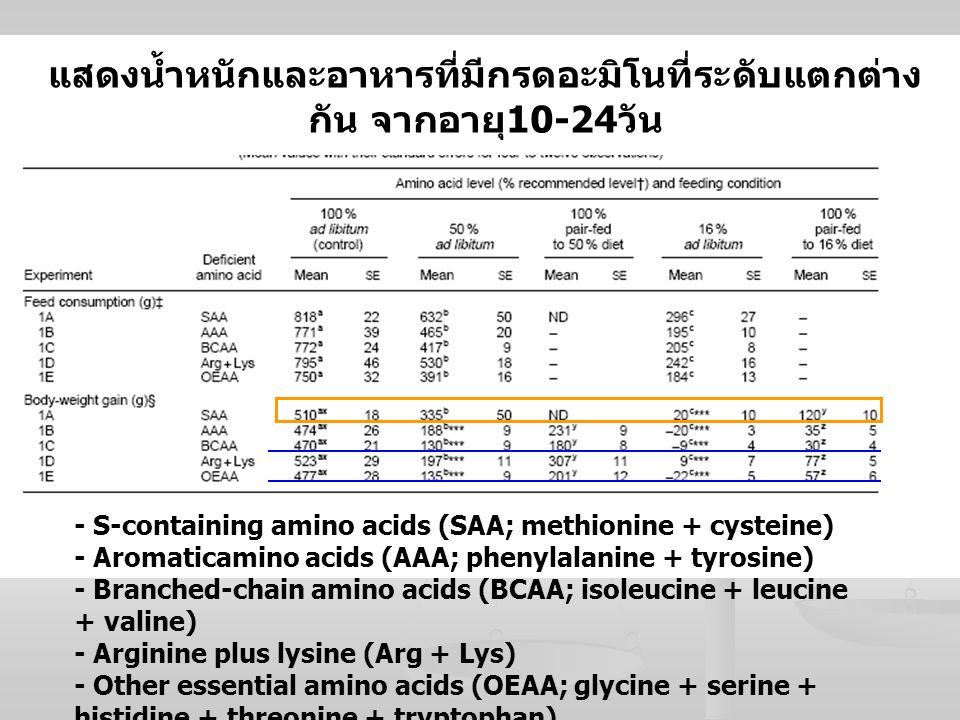 แสดงน้ำหนักและอาหารที่มีกรดอะมิโนที่ระดับแตกต่าง กัน จากอายุ 10-24 วัน - S-containing amino acids (SAA; methionine + cysteine) - Aromaticamino acids (
