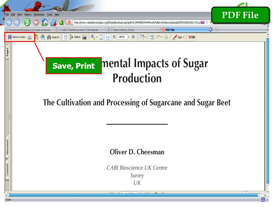 PDF File Save, Print