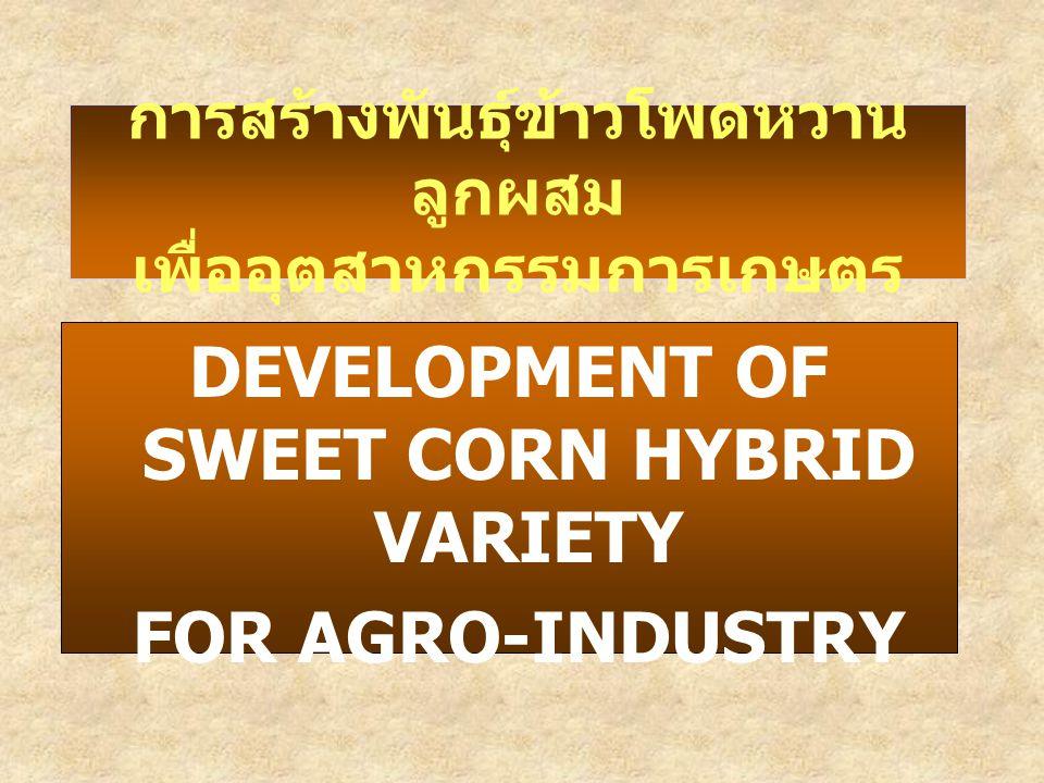 DEVELOPMENT OF SWEET CORN HYBRID VARIETY FOR AGRO-INDUSTRY การสร้างพันธุ์ข้าวโพดหวาน ลูกผสม เพื่ออุตสาหกรรมการเกษตร
