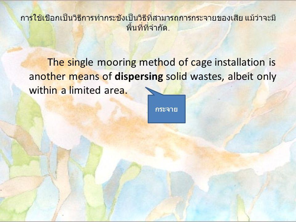 การใช้เชือกเป็นวิธีการทำกระชังเป็นวิธีที่สามารถการกระจายของเสีย แม้ว่าจะมี พื้นที่ที่จำกัด. The single mooring method of cage installation is another