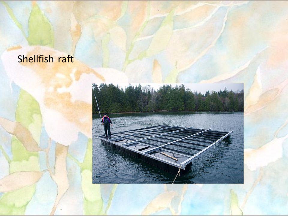 ในบริเวณแหล่งน้ำเล็กๆ อาจจะไม่แนะนำให้ใช้ วิธีนี้เนื่องจากว่ามีพื้นที่ที่จำกัดในการกระจาย ของของเสีย.