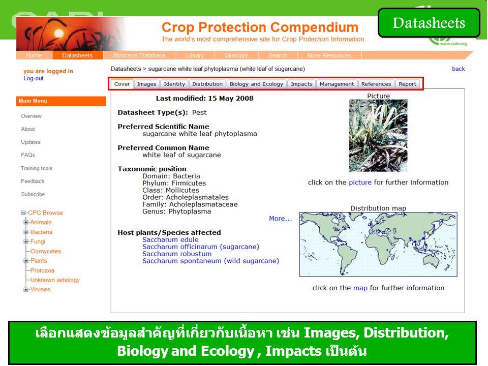 เลือกแสดงข้อมูลสำคัญที่เกี่ยวกับเนื้อหา เช่น Images, Distribution, Biology and Ecology, Impacts เป็นต้น Datasheets