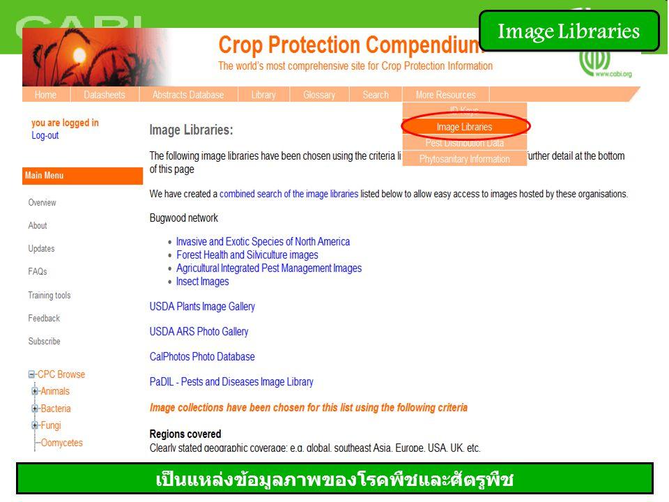 Image Libraries เป็นแหล่งข้อมูลภาพของโรคพืชและศัตรูพืช