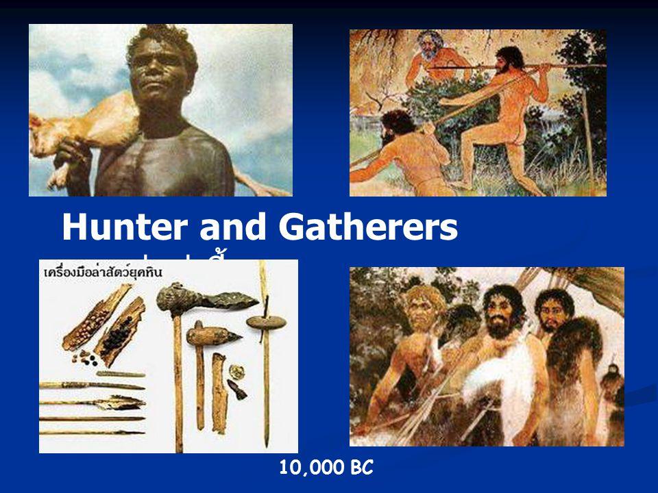 1. Prehistoric Agriculture 12,000 -10,000 BC 12,000 -10,000 BC มนุษย์ปรับตัวเข้ากับสภาพแวดล้อม (Adaptation) มนุษย์ปรับตัวเข้ากับสภาพแวดล้อม (Adaptatio