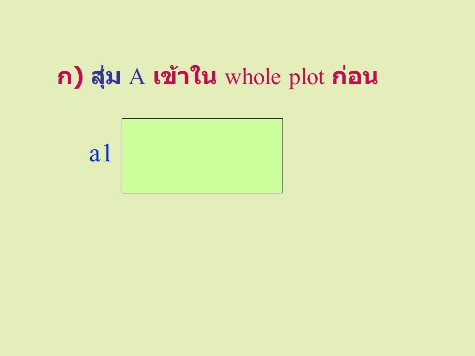 นำข้อมูลมาวิเคราะห์ ตามวิธีของ RCBD SOV dfSSMSF Whole plot Block r – 1 sig/ns A a – 1 sig/ns Error (a)( a – 1) (r – 1) Subplot B b – 1 sig/ns AB (a – 1) (b – 1) sig/ns Error (b) a (r – 1) (b – 1) Total abr – 1