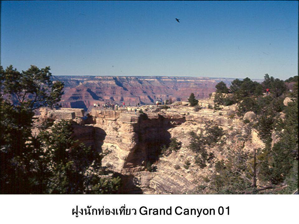 ฝูงนักท่องเที่ยว Grand Canyon 01