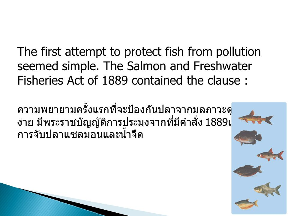 The first attempt to protect fish from pollution seemed simple.
