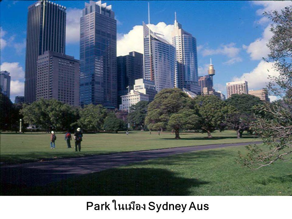 Park ในเมือง Sydney Aus
