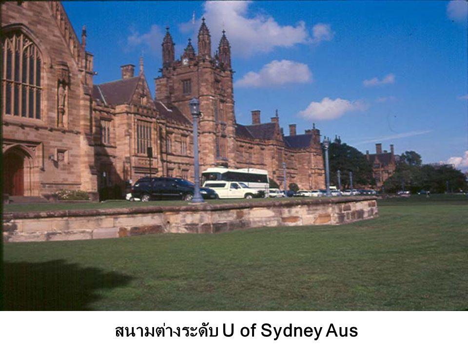 สนามหญ้า/ต้นศรีตรัง Court อาคาร U of Sydney