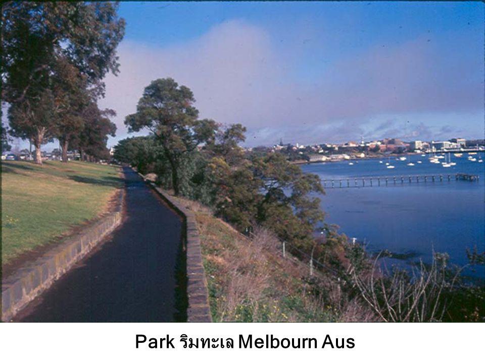 Park ริมทะเล Melbourn Aus