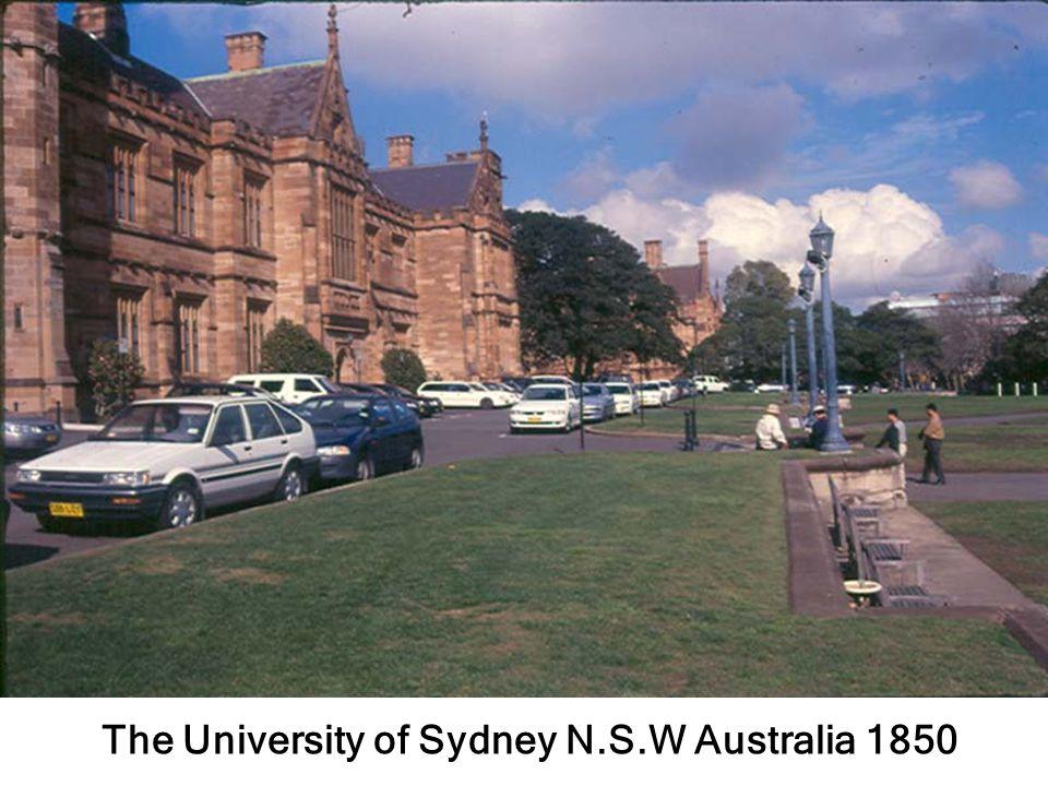 สนามหญ้า Sydney Aus