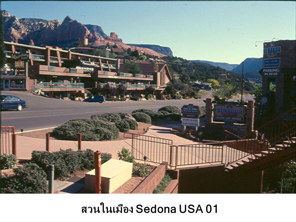 สวนในเมือง Sedona USA 01