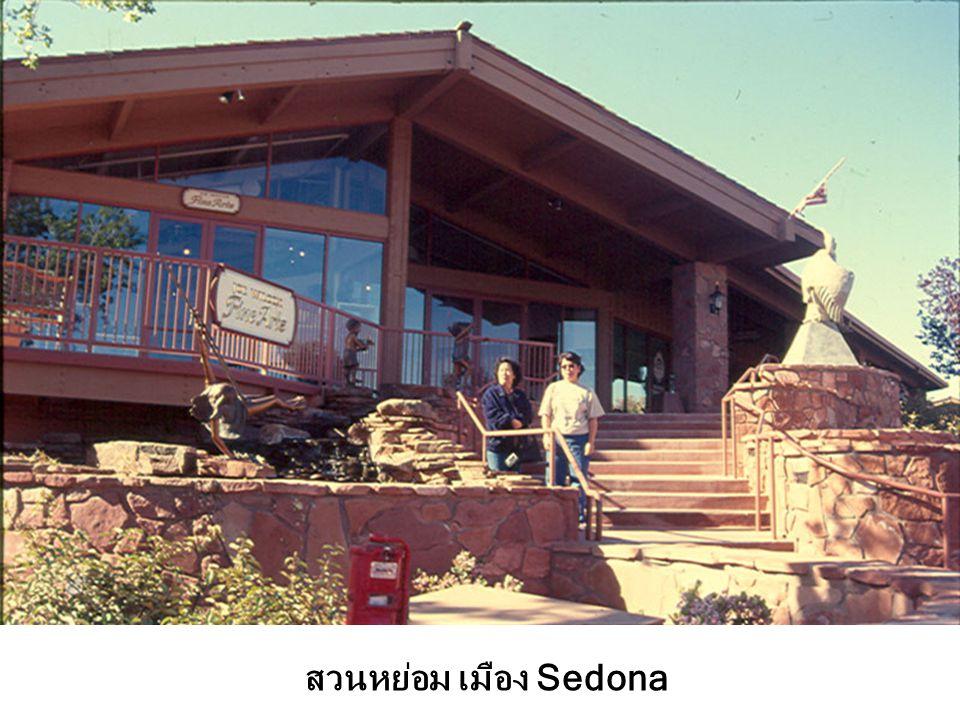สวนหย่อม เมือง Sedona