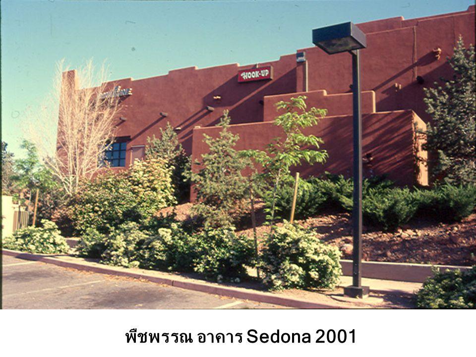 พืชพรรณ อาคาร Sedona 2001