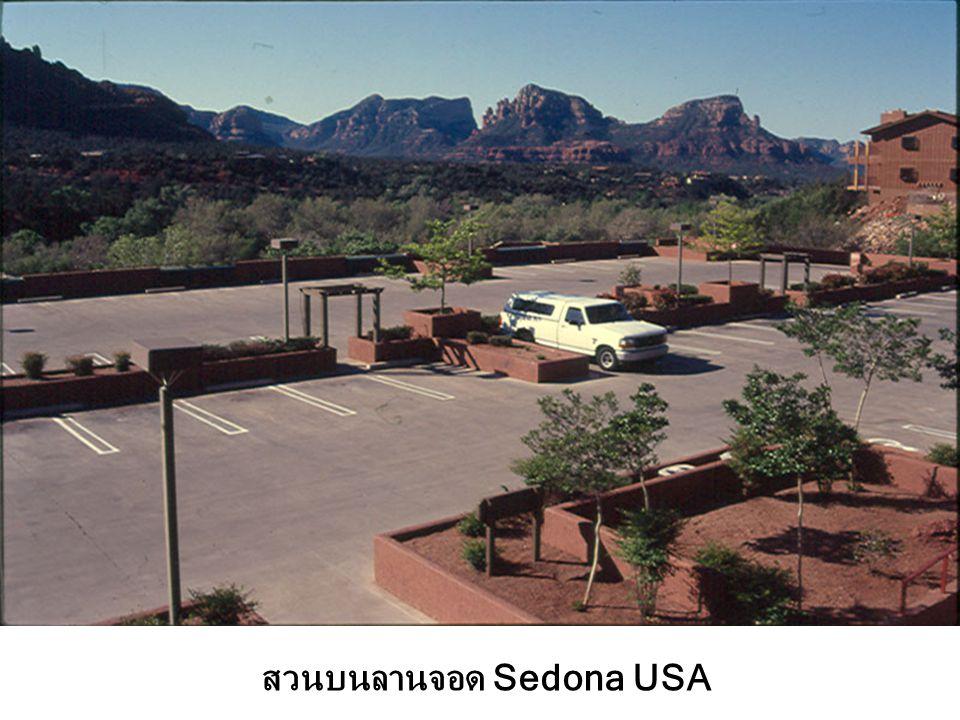 สวนบนลานจอด Sedona USA