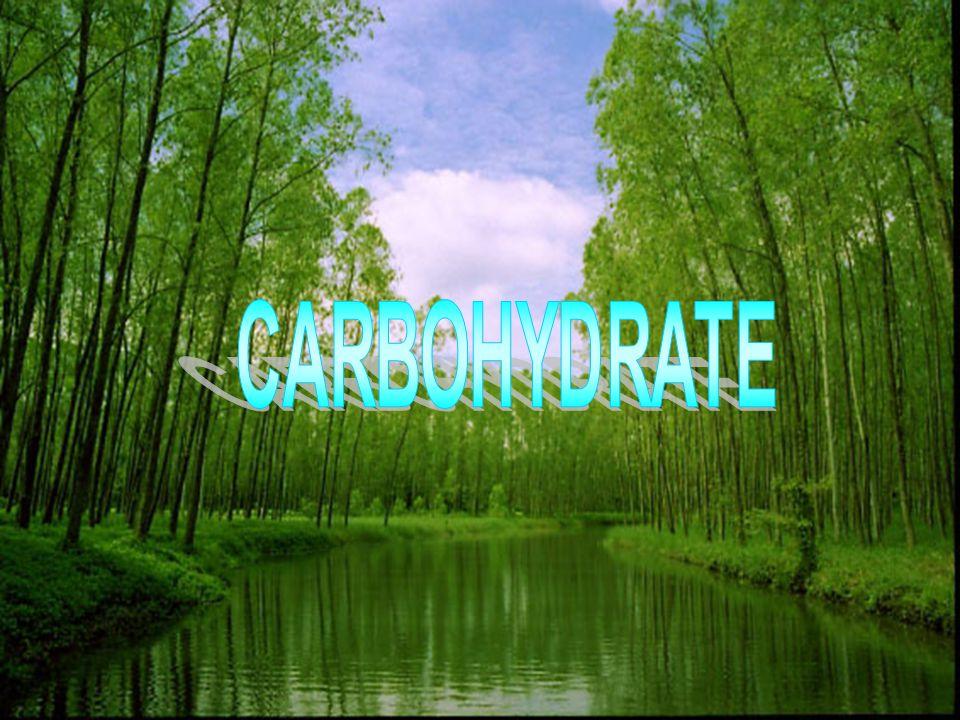โครงสร้างของมอโน แซ็กคาไรด์ โครงสร้างของมอโนแซ็กคาไรด์ แบบ Fischer projection และ แบบ Harworth projection โดยทั่วไปมอโนแช็กคาไรด์ที่มีจำนวนคาร์บอน 3 และ 4 อะตอมจะมีโครงสร้างที่เป็นเส้นตรง ส่วนพวกที่มีคาร์บอน 5 และ 6 อะตอมจะมี โครงสร้างแบบวงแหวน