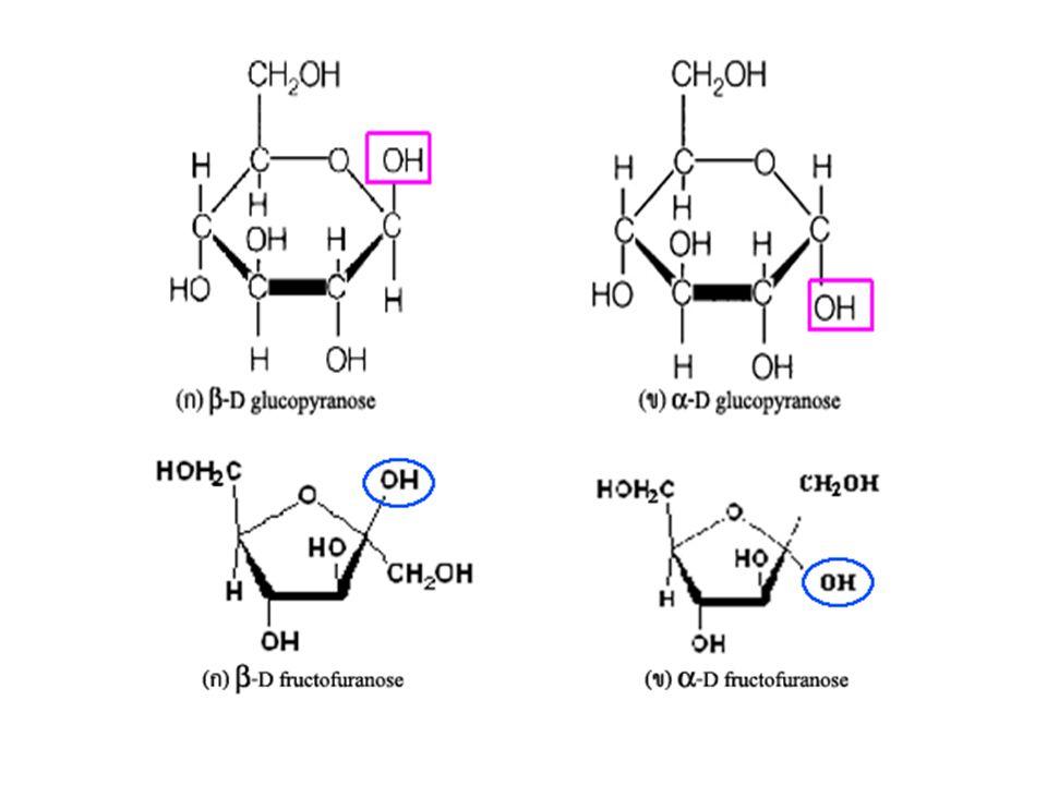 น้ำตาลแอลโดส จะเกิดโครงสร้างวงแหวนรูป 6 เหลี่ยม ได้โดยปฏิกิริยาการเกิด เฮมิอะซิทาล (hemiacetal) ระหว่างหมู่แอลดีไฮด์ของ C อะตอมที่ 1 กับ หมู่ไฮ ดรอกซิลของ C อะตอมที่ 5 ในโมเลกุลเดียวกัน เช่น น้ำตาลกลูโคส (D-glucose) ในธรรมชาติมีโครงสร้างเป็น วงแหวน 6 เหลี่ยม มีชื่อว่า D-glucopyranose (glucose + pyran) ดังภาพที่ 6 ข