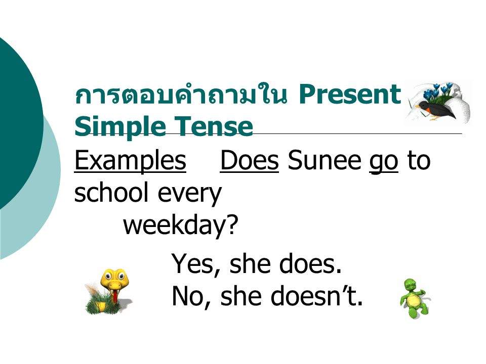 ExamplesDoes Sunee go to school every weekday? Yes, she does. No, she doesn't. การตอบคำถามใน Present Simple Tense