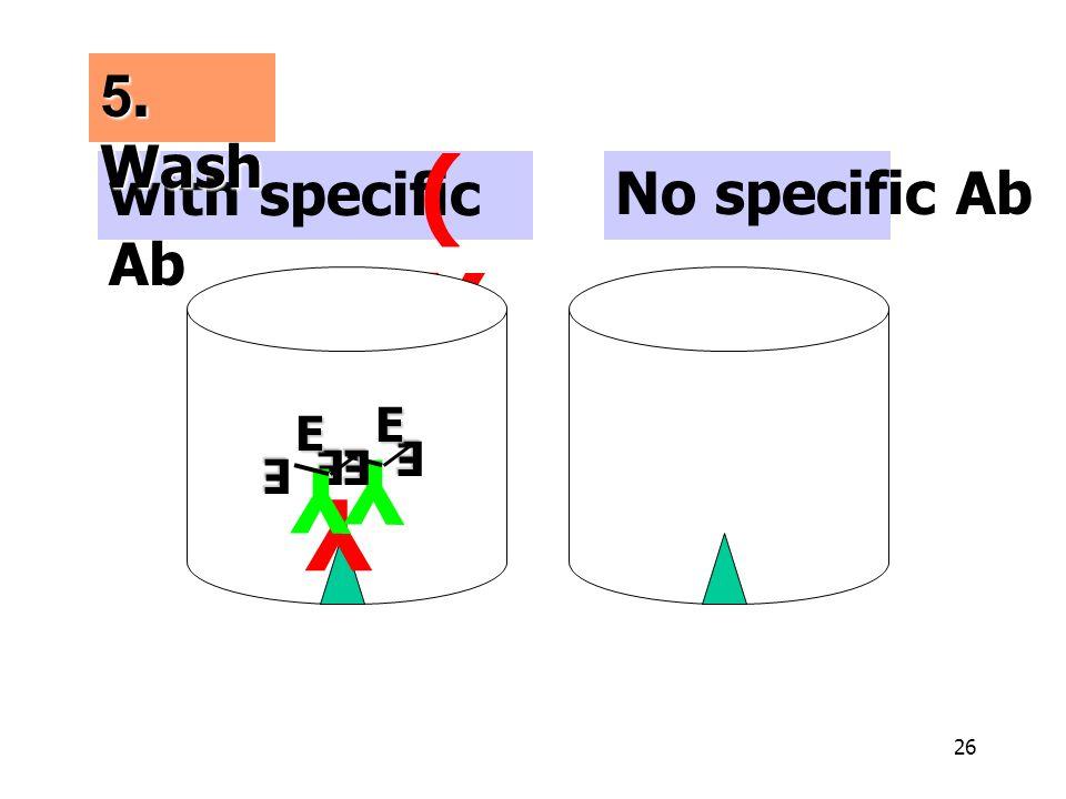 26 with specific Ab No specific Ab (Y)(Y) 5. Wash Y Y E E Y E E E E