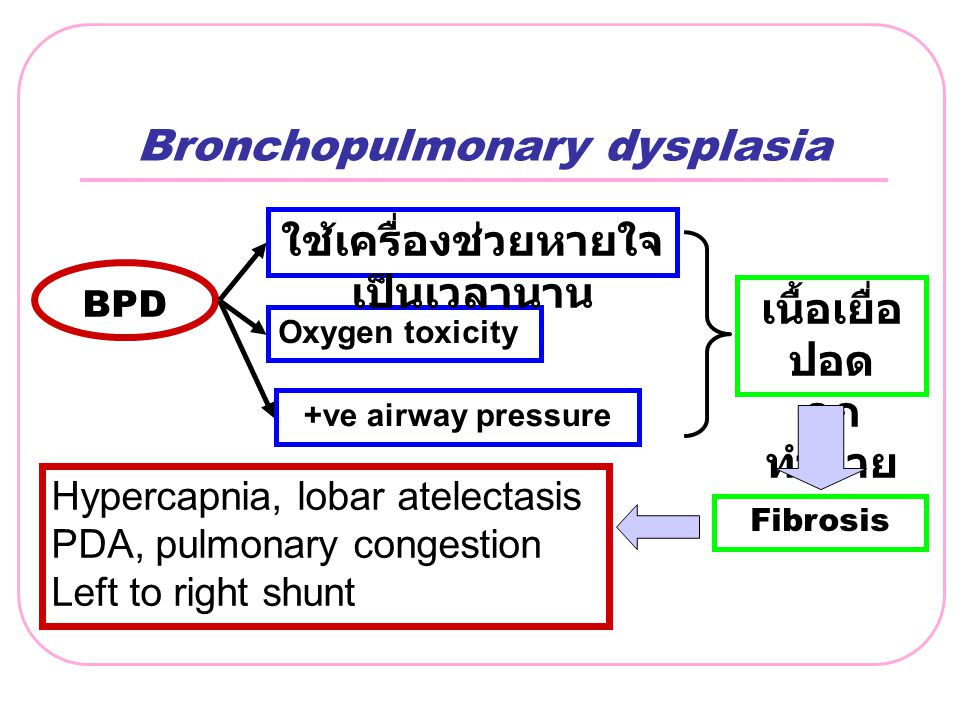 Bronchopulmonary dysplasia BPD +ve airway pressure Oxygen toxicity ใช้เครื่องช่วยหายใจ เป็นเวลานาน Fibrosis เนื้อเยื่อ ปอด ถูก ทำลาย Hypercapnia, loba