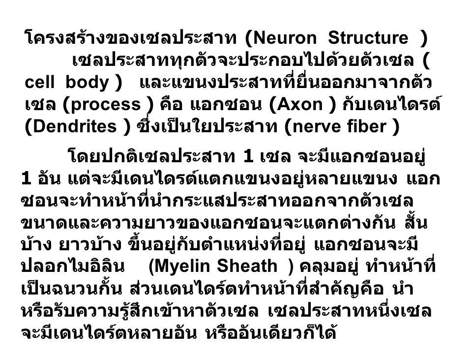 โครงสร้างของเซลประสาท (Neuron Structure ) เซลประสาททุกตัวจะประกอบไปด้วยตัวเซล ( cell body ) และแขนงประสาทที่ยื่นออกมาจากตัว เซล (process ) คือ แอกซอน