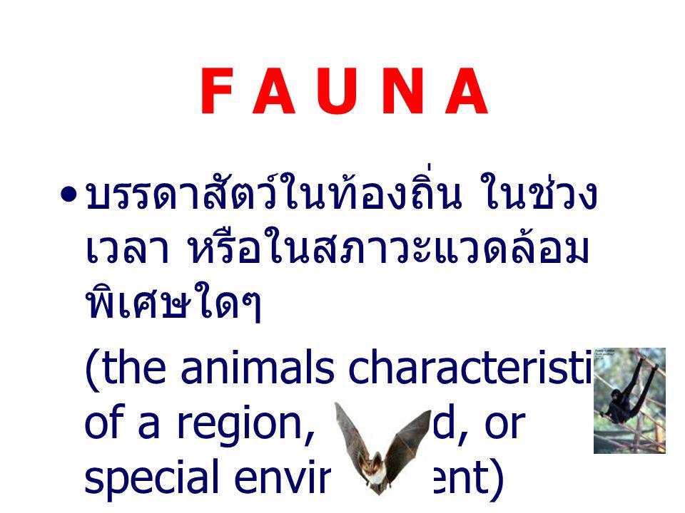 F L O R A รุกขชาติในท้องถิ่น หรือในช่วง ระยะเวลาใดๆ (list of the plants of an area or period)
