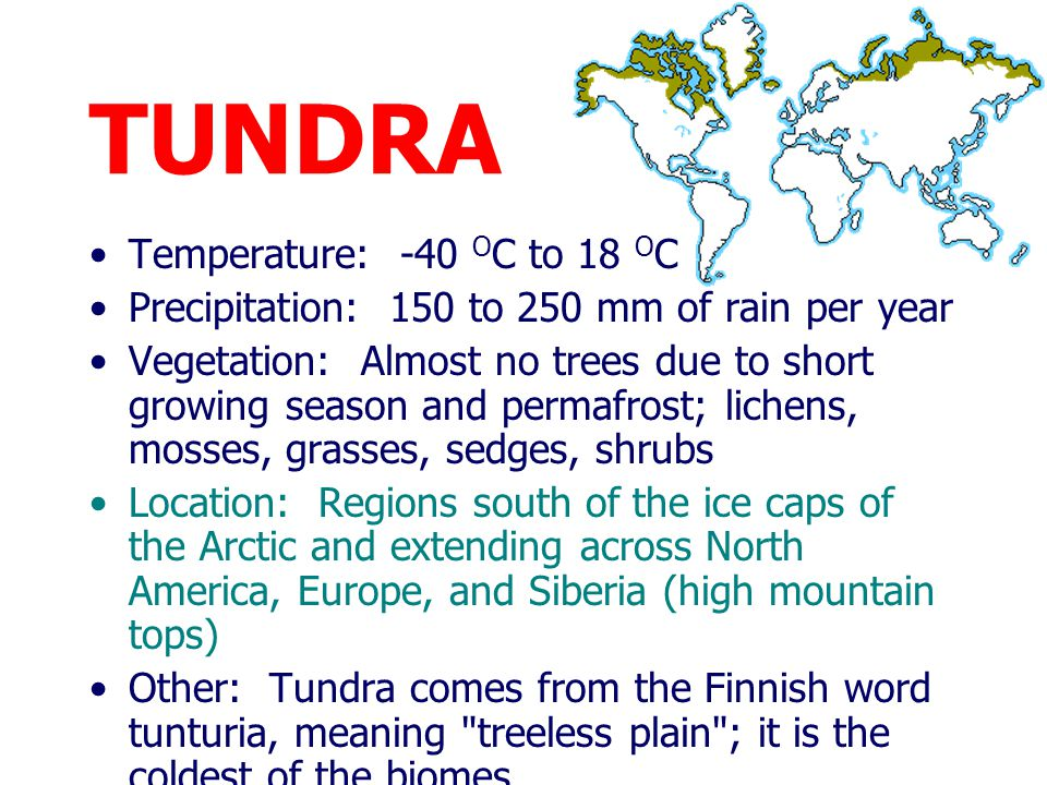 TUNDRA Long, severe winters and cool, brief summers At its warmest, the ground only thaws about 1m (3 ft); below this is permanently frozen ground, ca