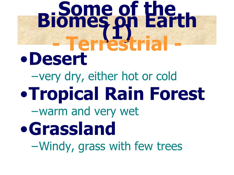 TUNDRA Long, severe winters and cool, brief summers At its warmest, the ground only thaws about 1m (3 ft); below this is permanently frozen ground, called permafrost