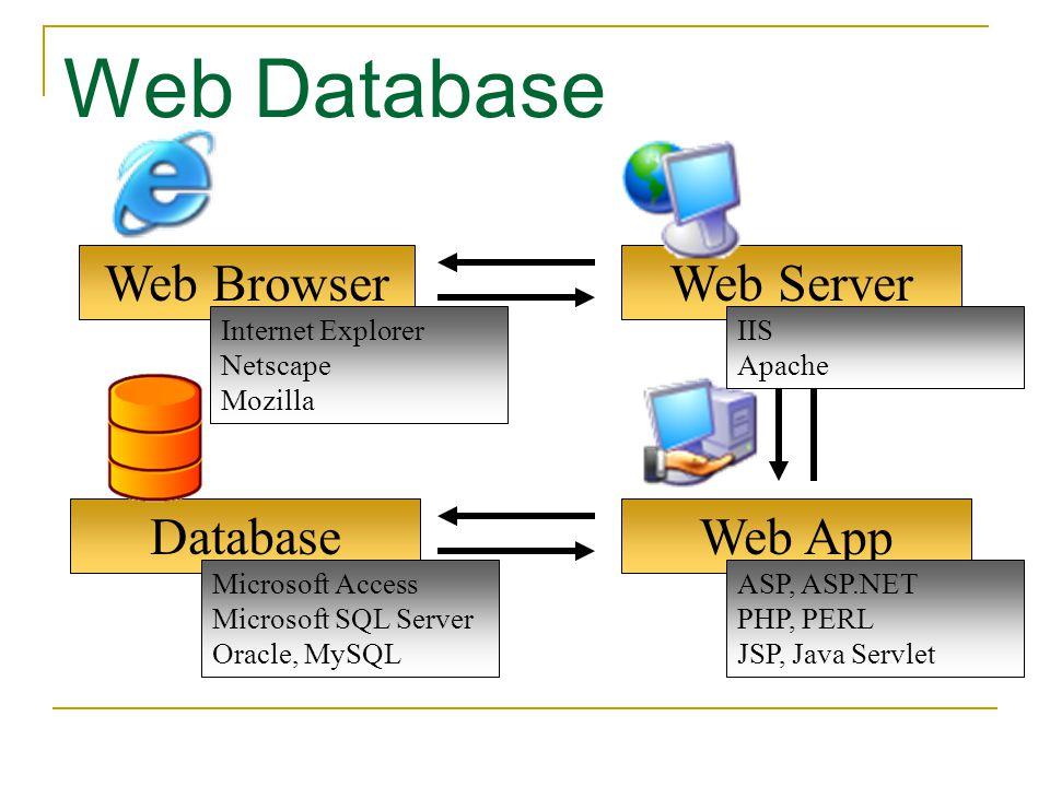 Web App Web Browser Web Database Web Server Database Microsoft Access Microsoft SQL Server Oracle, MySQL Internet Explorer Netscape Mozilla IIS Apache
