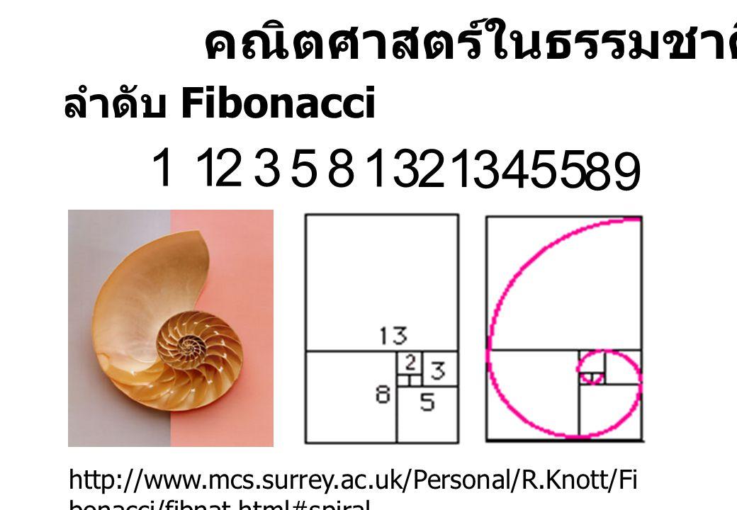 คณิตศาสตร์ในธรรมชาติ ลำดับ Fibonacci 1 23 5813 21 34 55 89 http://www.mcs.surrey.ac.uk/Personal/R.Knott/Fi bonacci/fibnat.html#spiral