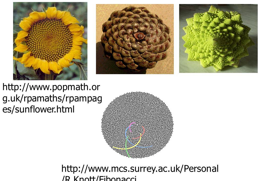 http://www.popmath.or g.uk/rpamaths/rpampag es/sunflower.html http://www.mcs.surrey.ac.uk/Personal /R.Knott/Fibonacci