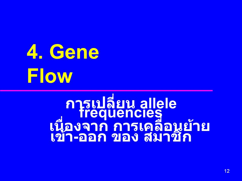 12 4. Gene Flow การเปลี่ยน allele frequencies เนื่องจาก การเคลื่อนย้าย เข้า - ออก ของ สมาชิก