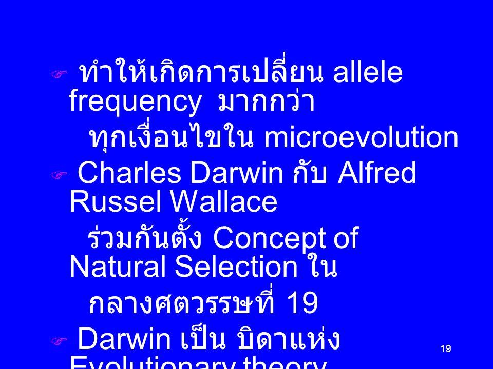 19  ทำให้เกิดการเปลี่ยน allele frequency มากกว่า ทุกเงื่อนไขใน microevolution  Charles Darwin กับ Alfred Russel Wallace ร่วมกันตั้ง Concept of Natural Selection ใน กลางศตวรรษที่ 19  Darwin เป็น บิดาแห่ง Evolutionary theory