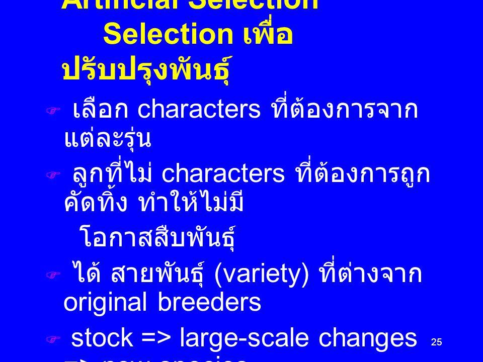 25 Artificial Selection Selection เพื่อ ปรับปรุงพันธุ์  เลือก characters ที่ต้องการจาก แต่ละรุ่น  ลูกที่ไม่ characters ที่ต้องการถูก คัดทิ้ง ทำให้ไม่มี โอกาสสืบพันธุ์  ได้ สายพันธุ์ (variety) ที่ต่างจาก original breeders  stock => large-scale changes => new species ๏ Dog breeds บรรพบุรุษคือ wolf