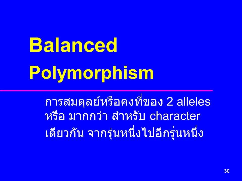 30 การสมดุลย์หรือคงที่ของ 2 alleles หรือ มากกว่า สำหรับ character เดียวกัน จากรุ่นหนึ่งไปอีกร ุ่ นหนึ่ง Balanced Polymorphism