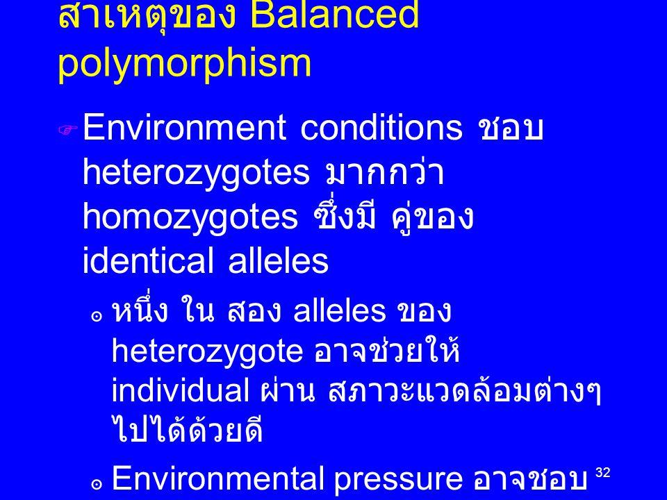 32 สาเหตุของ Balanced polymorphism  Environment conditions ชอบ heterozygotes มากกว่า homozygotes ซึ่งมี คู่ของ identical alleles ๏ หนึ่ง ใน สอง alleles ของ heterozygote อาจช่วยให้ individual ผ่าน สภาวะแวดล้อมต่างๆ ไปได้ด้วยดี ๏ Environmental pressure อาจชอบ combination ระหว่าง  1 normal allele และ  1 mutated allele