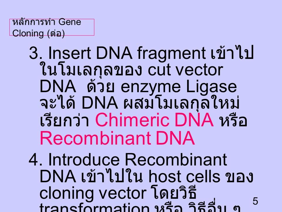 6 Recombinan t DNA First cloning Principle of cloning