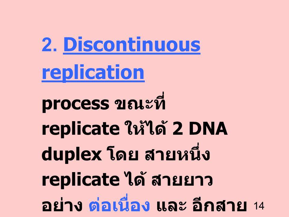 14 2. Discontinuous replication process ขณะที่ replicate ให้ได้ 2 DNA duplex โดย สายหนึ่ง replicate ได้ สายยาว อย่าง ต่อเนื่อง และ อีกสาย หนึ่ง replic