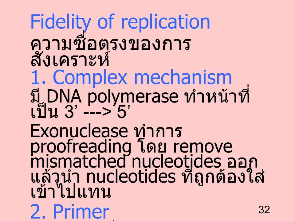 32 Fidelity of replication ความซื่อตรงของการ สังเคราะห์ 1. Complex mechanism มี DNA polymerase ทำหน้าที่ เป็น 3' ---> 5' Exonuclease ทำการ proofreadin