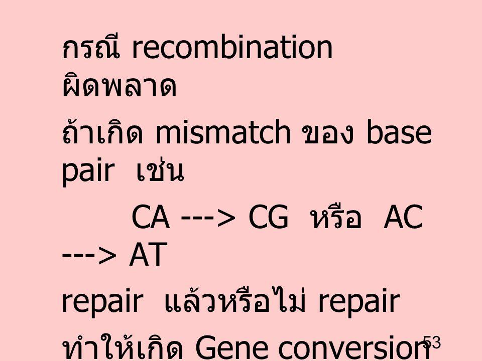 53 กรณี recombination ผิดพลาด ถ้าเกิด mismatch ของ base pair เช่น CA ---> CG หรือ AC ---> AT repair แล้วหรือไม่ repair ทำให้เกิด Gene conversion --->