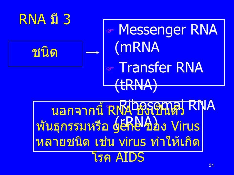 31 RNA มี 3 ชนิด  Messenger RNA (mRNA  Transfer RNA (tRNA)  Ribosomal RNA (rRNA) นอกจากนี้ RNA ยังเป็นตัว พันธุกรรมหรือ gene ของ Virus หลายชนิด เช่