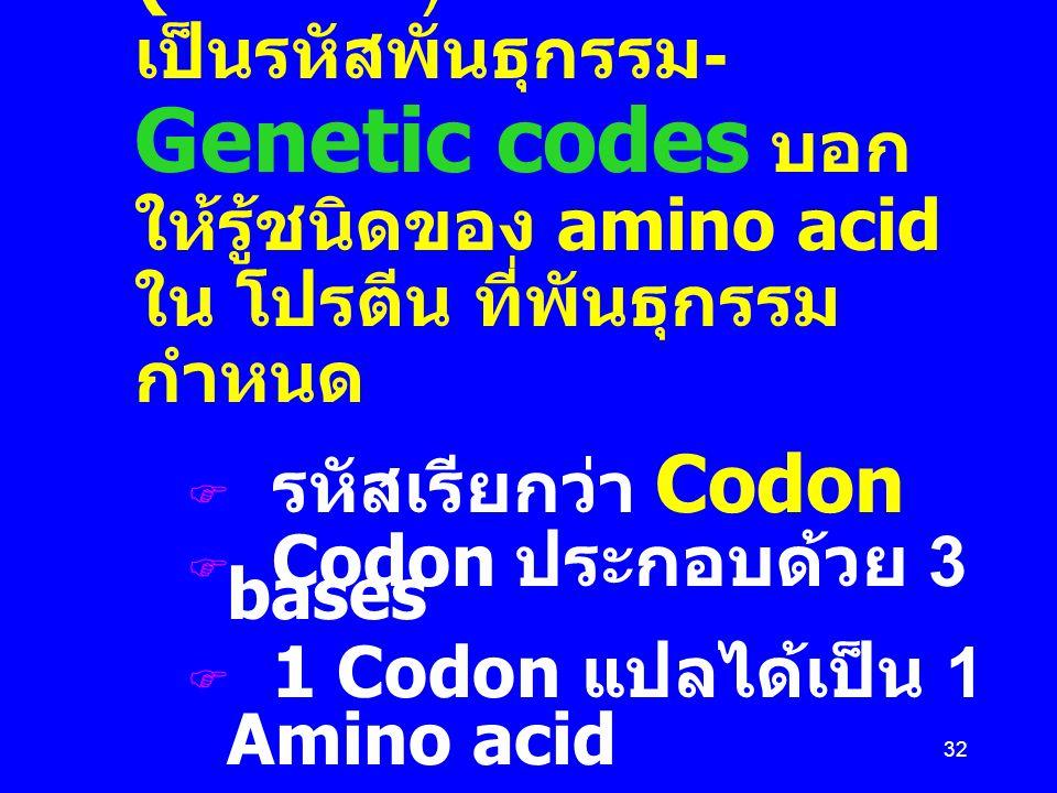 32 Messenger RNA (mRNA) เป็นรหัสพันธุกรรม - Genetic codes บอก ให้รู้ชนิดของ amino acid ใน โปรตีน ที่พันธุกรรม กำหนด  รหัสเรียกว่า Codon  Codon ประกอ