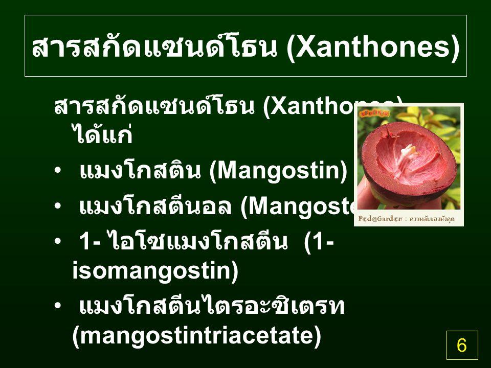 สารสกัดแซนด์โธน (Xanthones) สารสกัดแซนด์โธน (Xanthones) ได้แก่ แมงโกสติน (Mangostin) แมงโกสตีนอล (Mangostenol) 1- ไอโซแมงโกสตีน (1- isomangostin) แมงโกสตีนไตรอะซิเตรท (mangostintriacetate) 6