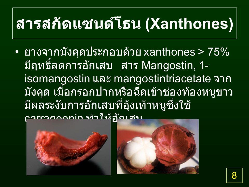 สารสกัดแซนด์โธน (Xanthones) ยางจากมังคุดประกอบด้วย xanthones > 75% มีฤทธิ์ลดการอักเสบ สาร Mangostin, 1- isomangostin และ mangostintriacetate จาก มังคุด เมื่อกรอกปากหรือฉีดเข้าช่องท้องหนูขาว มีผลระงับการอักเสบที่อุ้งเท้าหนูซึ่งใช้ carrageenin ทำให้อักเสบ 8